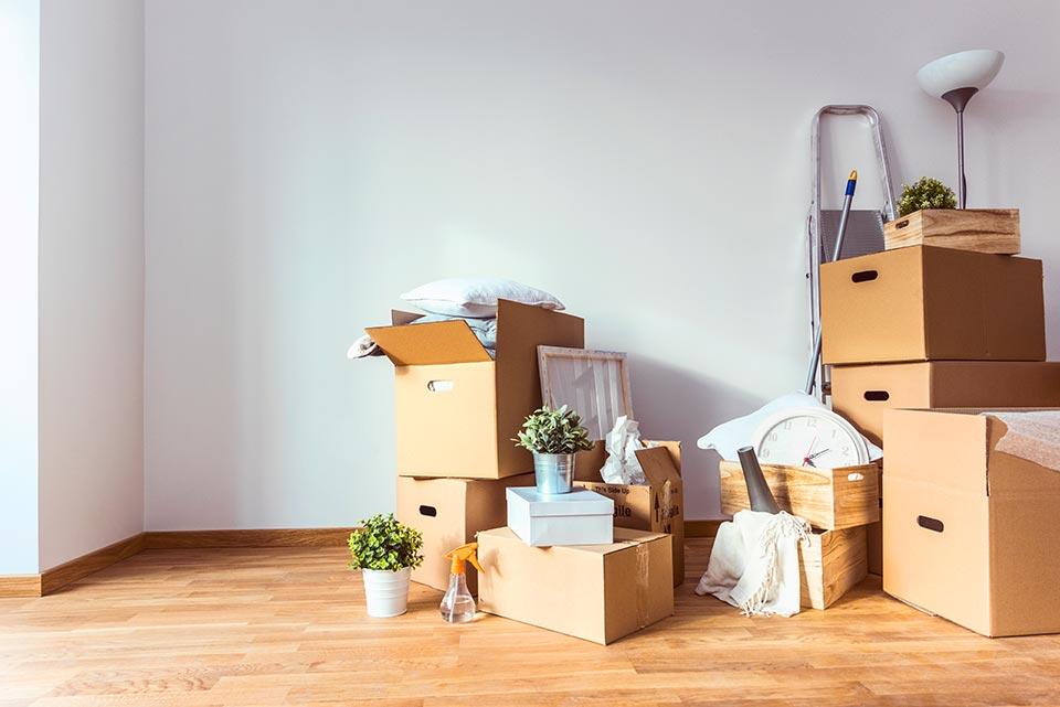 Naturally Organized, Moving organization